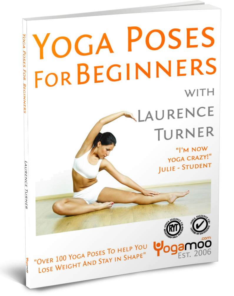 Yoga poses for beginners book