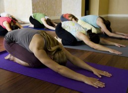 Beginners-Yoga-Course