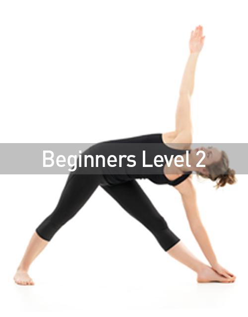 Beginners Level 2