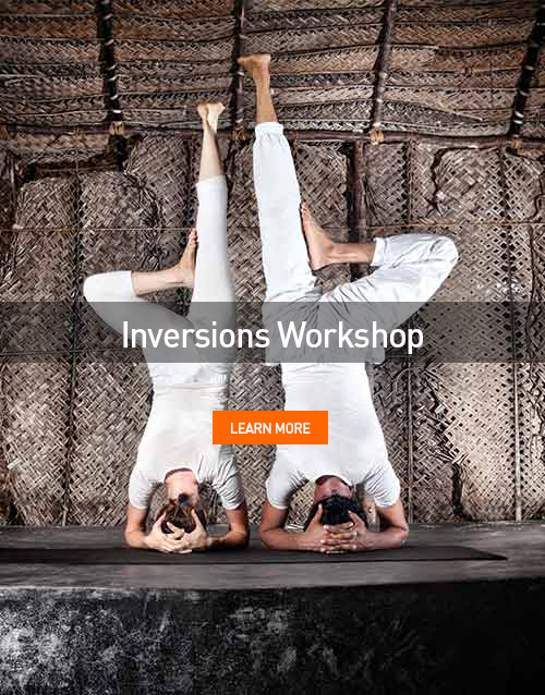 Inversions [WORKSHOP]