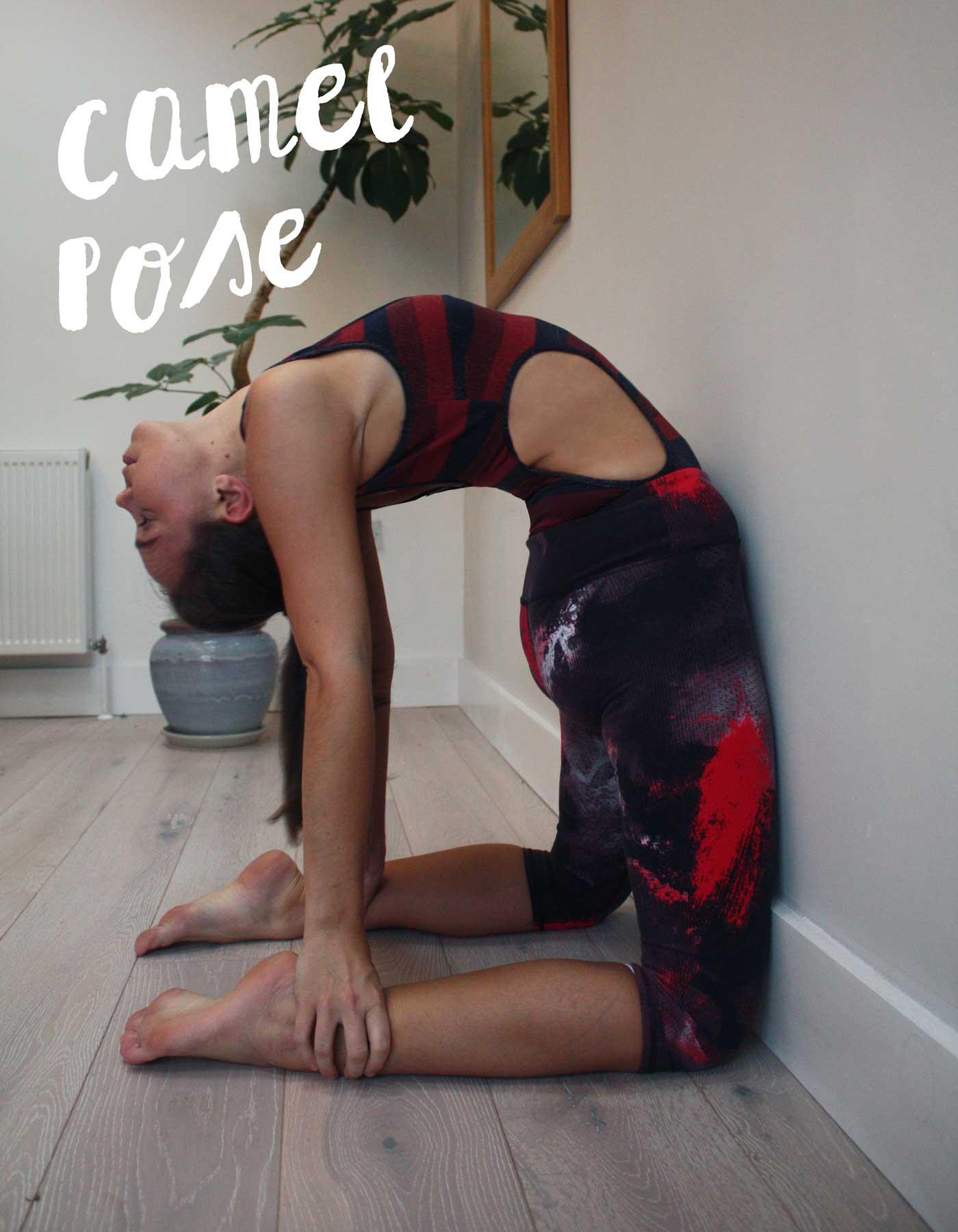 wall-yoga-camel