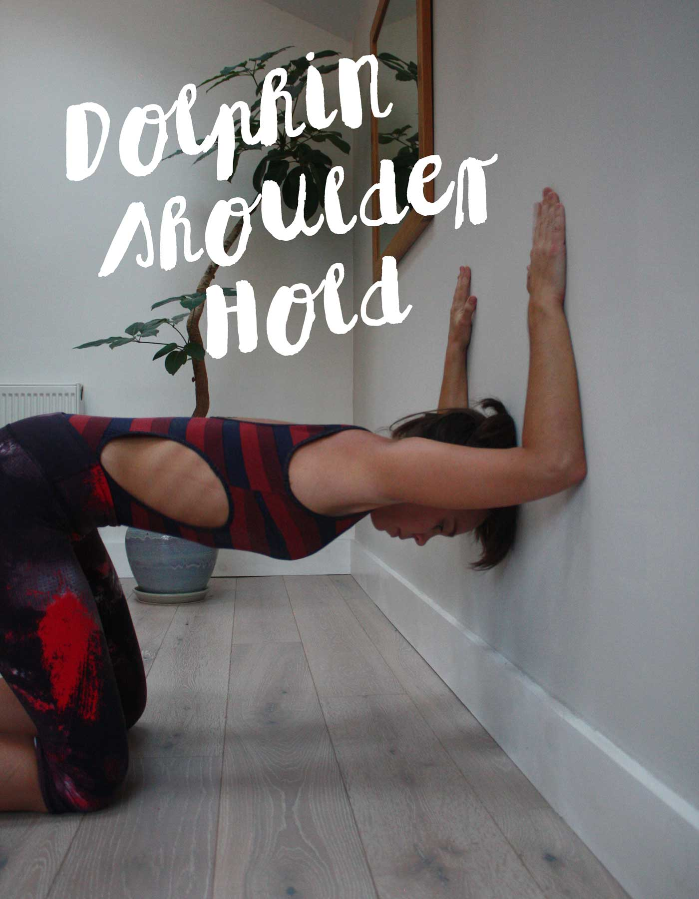 wall-yoga-dolphin