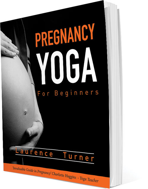 Pregnancy Yoga Book